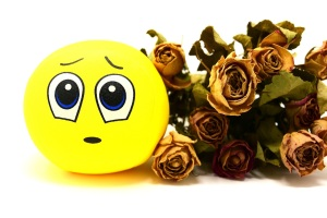 Sad Face Dried Flowers